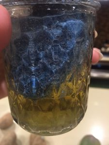 A picture of homemade wood dye from vinegar and steel wool after 24 hours